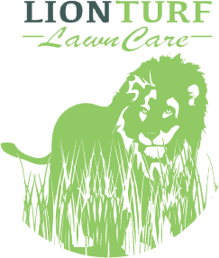 Lion Turf Lawn Care LLC