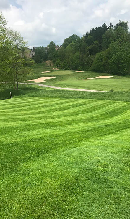 Lion Turf Lawn Care LLC Landscaping